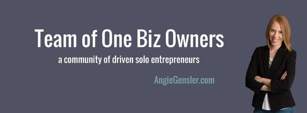 Team of One Biz Owners