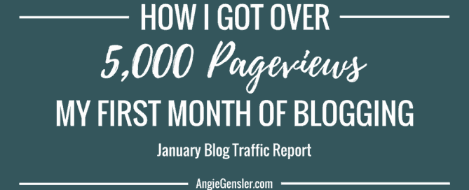 January 2017 Blog Traffic Report_FB